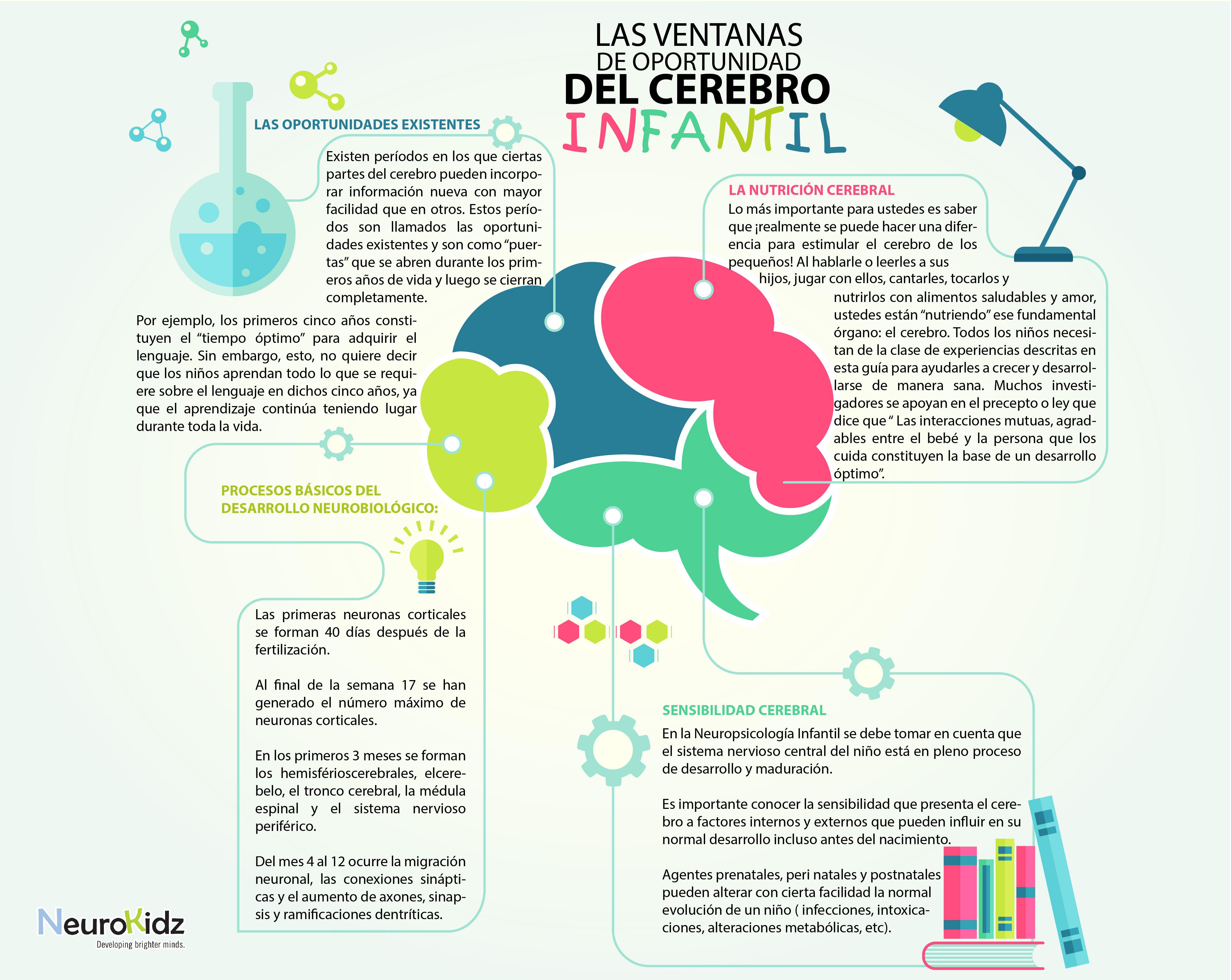 cerebro infantil-01